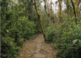 Caminho do Itupava permanece fechado por tempo indeterminado