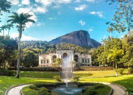 Parque Nacional da Tijuca é reaberto no Rio de Janeiro