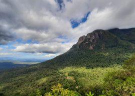 Unidades de conservação do Paraná voltam a fechar