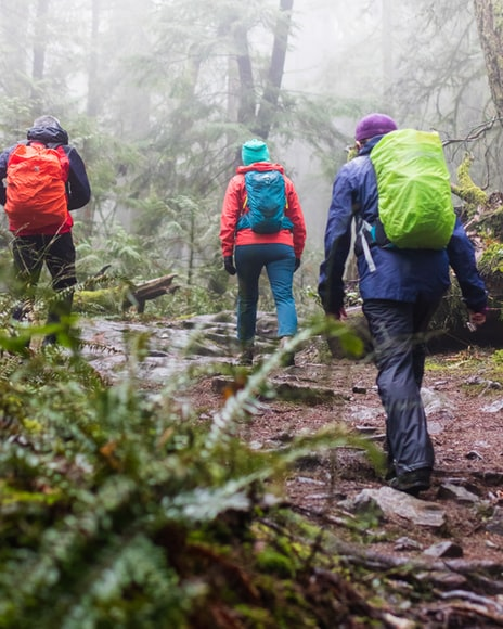 Para cégo ver: A imagem mostra três pessoas de costas, sendo que são dois homens e uma mulher, caminhando em uma floresta com terreno úmido e acidentado. Todos estão utilizando roupas e equipamentos coloridos, sendo que cada um usa jaqueta impermeável, calça comprida e mochila.